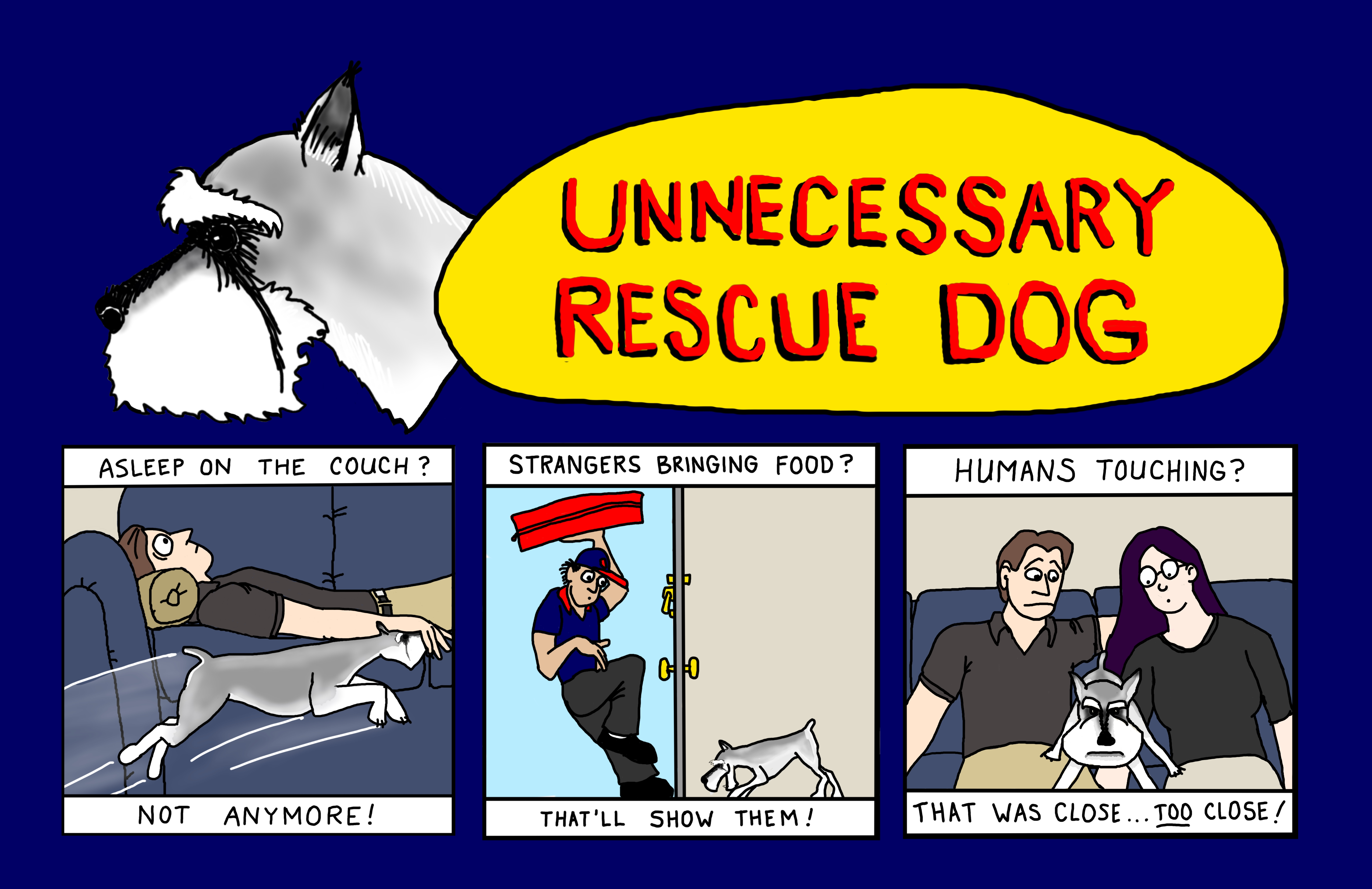 Define Rescue Dog